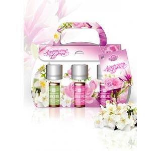 Сувенирный набор ароматизаторов в картонной упаковке Ароматный Букет Царство ароматов